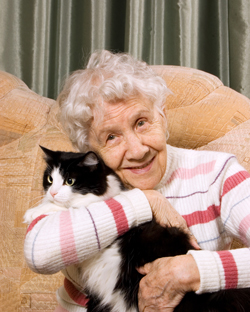 What happens to my pet when I move into aged care? Or hospital?